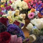 Johnson's Florist & Garden Centers